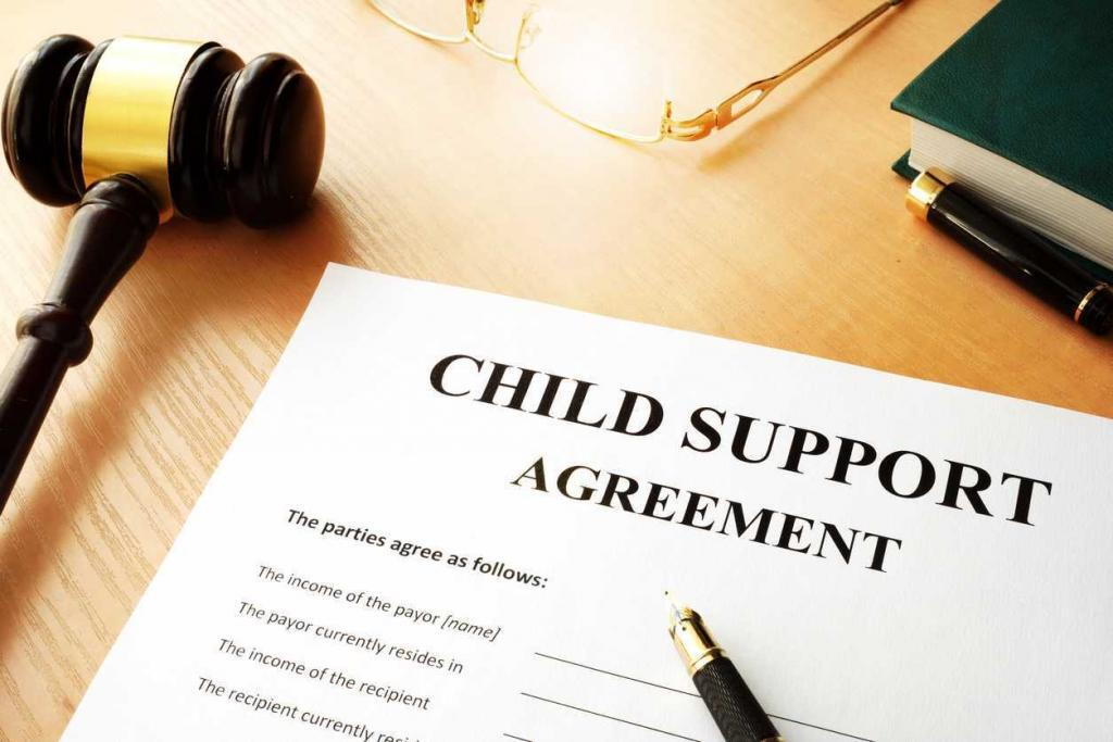 what does child support pay for?